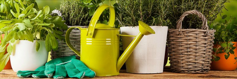 Beautify Your Garden: the Right Gardening Accessories to the Rescue
