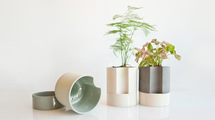 buy self watering planter