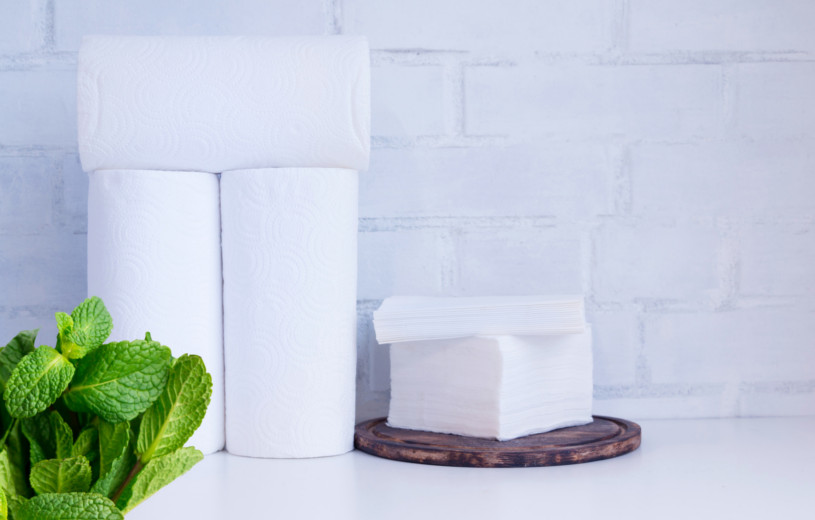 Toilet Paper Use: Making An Age-Old Habit Green