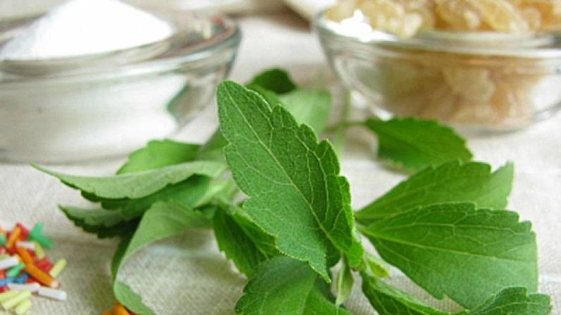 stevia-water-enhancer