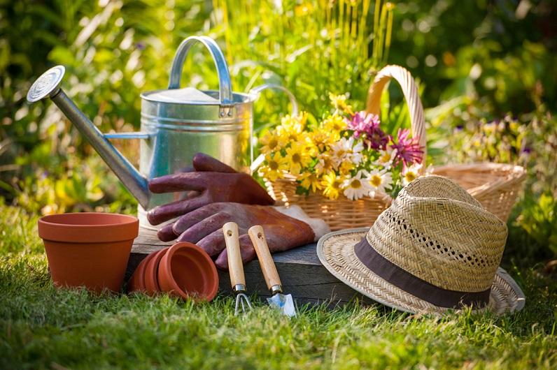 The Magic Wand of DIY-ing in Gardening