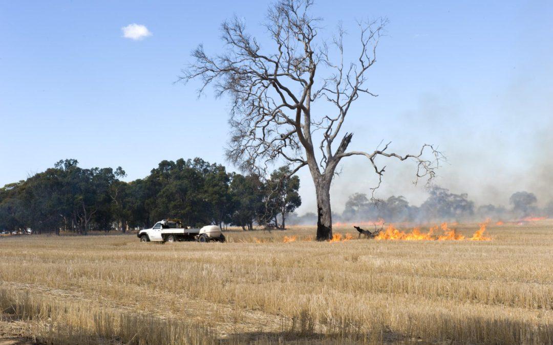 Water Pumps: The Easiest Way to Battle Bushfires
