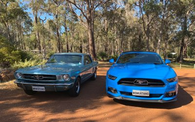 What You Need to Know About Installing a Throttle Controller in Your Mustang